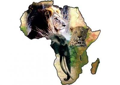 Adventure Africa Safaris